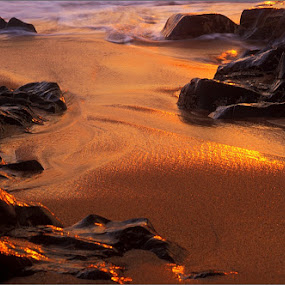 Golden Reflection by Kittie Groenewald - Nature Up Close Sand (  )