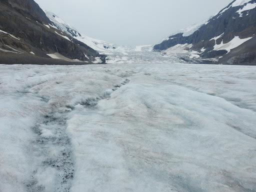 アサバスカ氷河 ジャスパー 国立公園