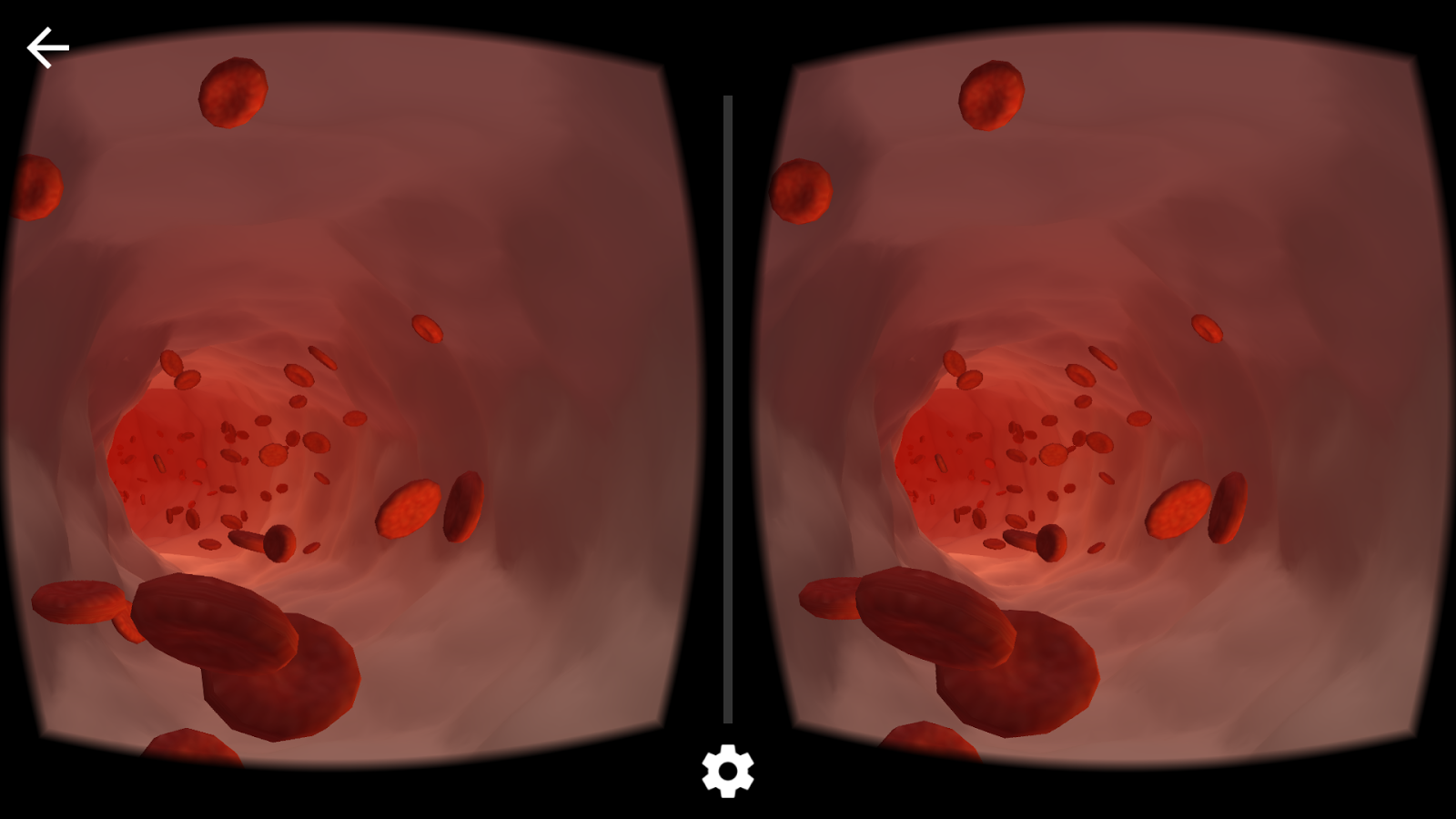 Viewport VR Medical- screenshot