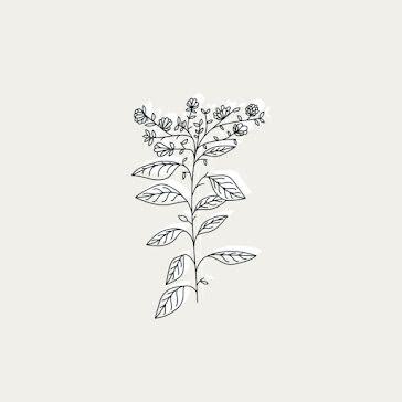 Floral Botanical - Instagram Highlight template