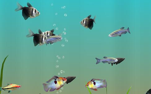 MyLake 3D Aquarium 3