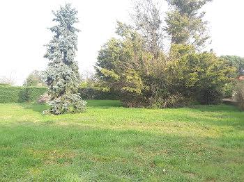 terrain à La Tour-de-Salvagny (69)