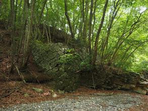Photo: 森鉄の橋脚跡かな