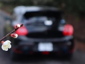 スイフトスポーツ ZC33S のカスタム事例画像 KAZU さんの2020年02月11日09:51の投稿