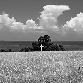 by Estislav Ploshtakov - Black & White Landscapes