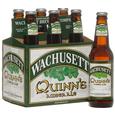 Wachusett Quinn's Irish Ale