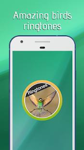 Birds Ringtones Free 2018 - náhled