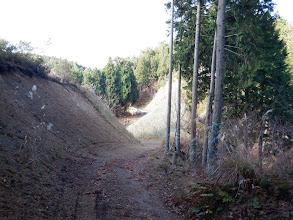 舗装林道が見えてきた