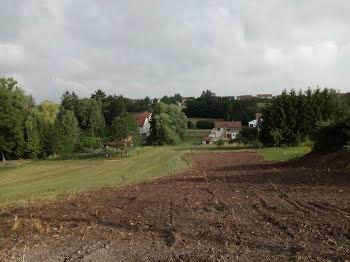 terrain à Willerwald (57)