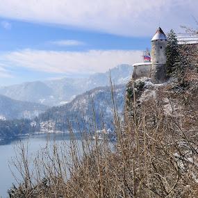 Castle by Renata Peterman - Buildings & Architecture Public & Historical ( hills, flag, winter, snow, lake, castle, view )