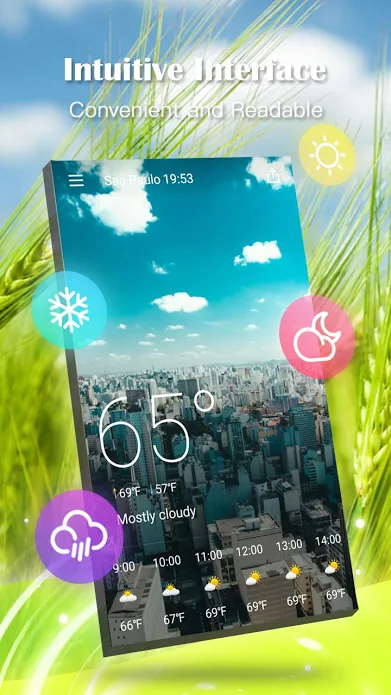 Weather Forecast Pro Screenshot 2