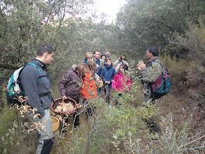 Photo: Micología