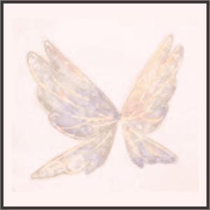 空一杯の羽