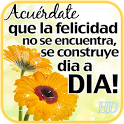 Imagenes Frases de Felicidad icon
