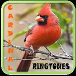 Cardinal Ringtones Icon