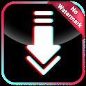 Video Downloader for TikTok : No Watermark 🎞️ icon