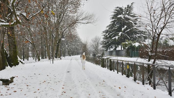 Come la neve di Luca Mandelli