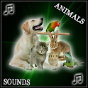 Best Animals Sounds icon