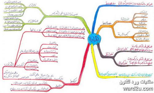 الخرائط الذهنية  mind mapping