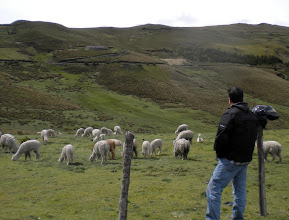 Photo: Brian stops to enjoy the alpacas and the beauty of their home in the high mountains of Ecuador.