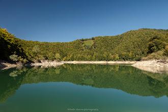 Photo: Selva de Irati  Filtros: Polarizador y GND 0.9