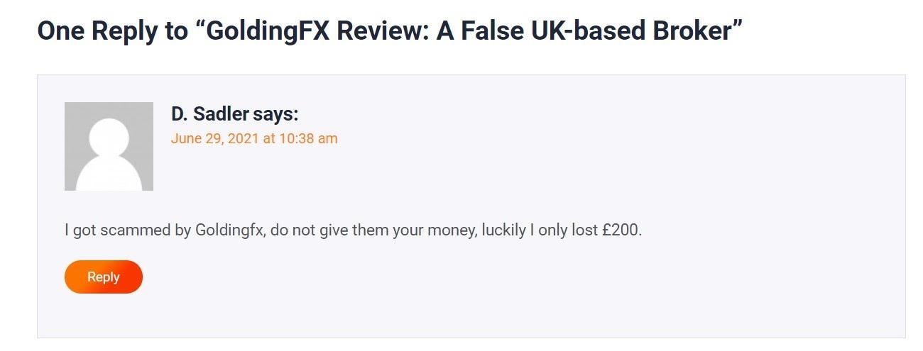 GoldingFX: отзывы о работе с новым брокером и общий обзор информации