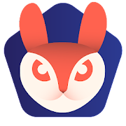 Private Browser Rabbit - The Incognito Browser