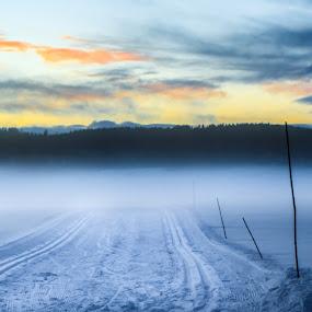 Into the mist! by Bjørn Kristiansen - Landscapes Sunsets & Sunrises ( winter, fog, sunset, landscape, mist )