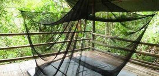 Lupa Masa Jungle Camp