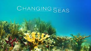 Changing Seas thumbnail