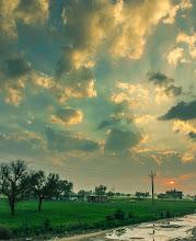 Photo: around pilani campus - Shekhawati region of Rajasthan