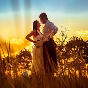 wedding by Dejan Nikolic Fotograf Krusevac - Wedding Bride & Groom ( aleksandrovac, vencanje, paracin, krusevac, wedding, sunset, svadba, kragujevac, photo-fotograf.com, vrnjacka banja, fotograf )