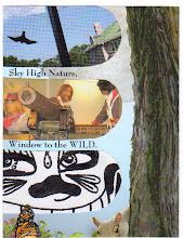 Photo: Wenchkin's Mail Art 366 - Day 188 - Card 188a