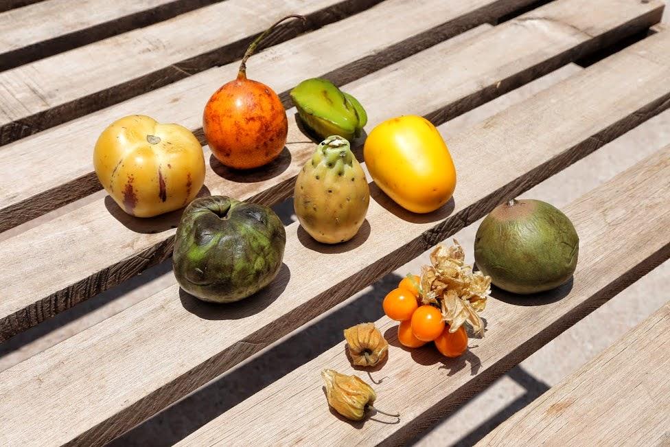 Peru, owoce