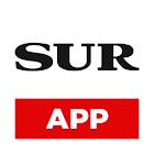 Diario Sur icon