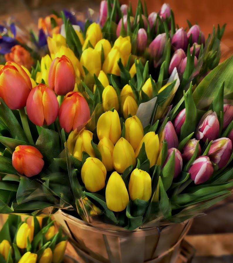 Flowershop Display by Millieanne T - Flowers Flower Arangements