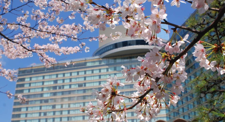 Hotel New Otani Tokyo