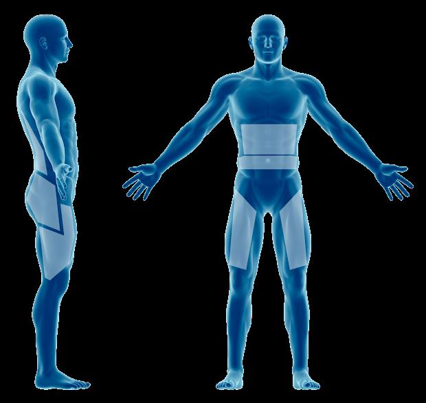 perdre du ventre et abdos musclés rapidement