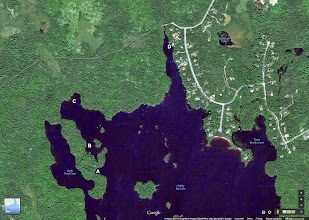 Photo: Google Image of the top of Hubley Big Lake. Sites A,B,C,D cited with pics. Visited on 7 July, 2014