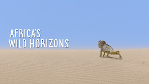 Africa's Wild Horizons thumbnail