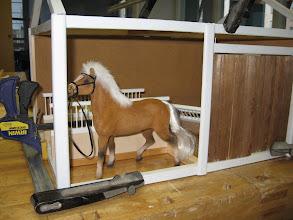 Photo: 18b. Jannan hevonen sopii pilttuuseen