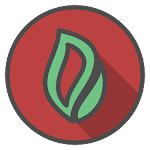 Ortus Icon Pack Pro Icon