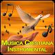 ✝️🎶Canciones cristianas de amor instrumentales apk
