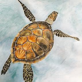 Sea Turtle  by Anika McFarland - Drawing All Drawing ( sea turtle, ocean, ocean animal, turtle, drawing, animal )