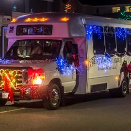 Parade Bus by Darren Sutherland - Public Holidays Christmas ( 2017, christmas, sidney parade )