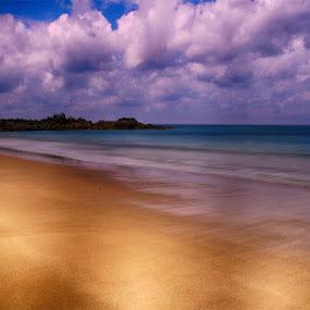 Golden Beach by Martin Seraphin - Landscapes Beaches ( bretagne, france, beach )