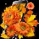 Autumn Flowers live wallpaper Download for PC Windows 10/8/7
