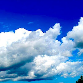 Moving Clouds by Ronnie Caplan - Landscapes Cloud Formations ( sky, blue, clouds, trees, landscape,  )