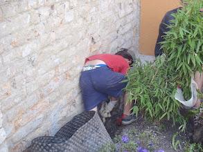 Photo: Míša kopal základy