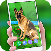 Pet Dog Live Wallpaper 2018: Colorful Background